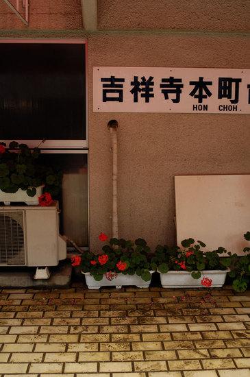 20080706_DSC1913.jpg