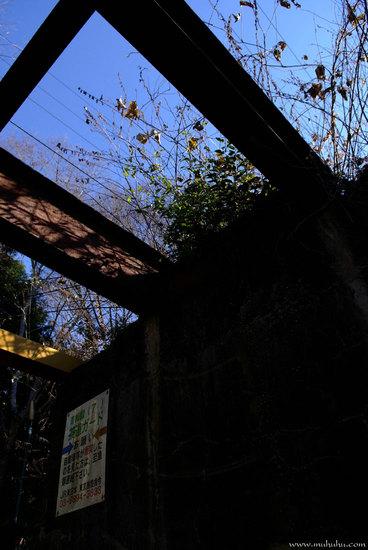 201112_DSCF6720_1.jpg